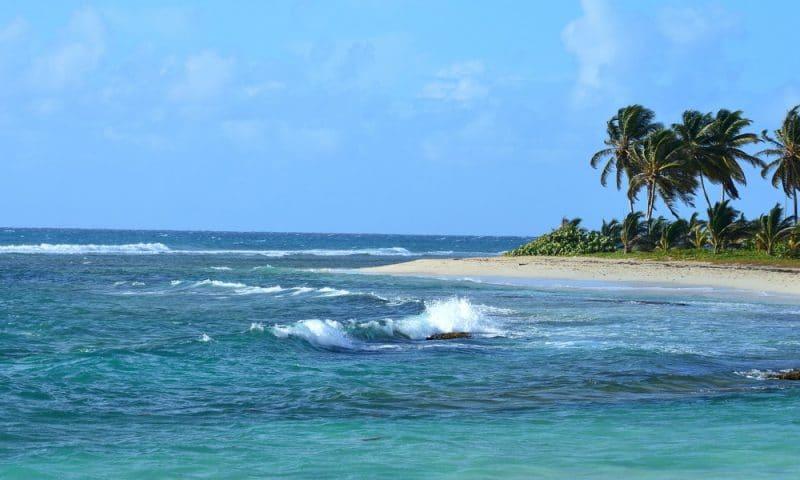 Que faire en Guadeloupe ?